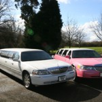 pink-limo-and-white-limo-in-sunshine-on-road