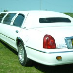 white-limo-on-grass